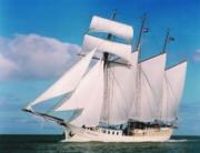ein Dreimaster-Segelschiff mit geblähten Segeln auf offener See vor blauem Himmel mit weißen Wolken