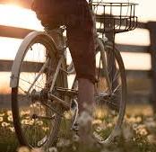 Ein Fahrradfahrer fährt mit seinem Fahrrad einen Zaun entlang, man sieht nur den unteren Teil vom Fahrrad, erkennt also nicht wirklich ob es ein Mann oder eine Frau ist, im Hintergrund Abendstimmung