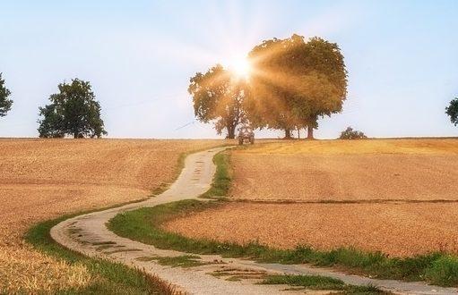 ein unbefestigter Feldweg läuft dem Sonnenuntergang entgegen
