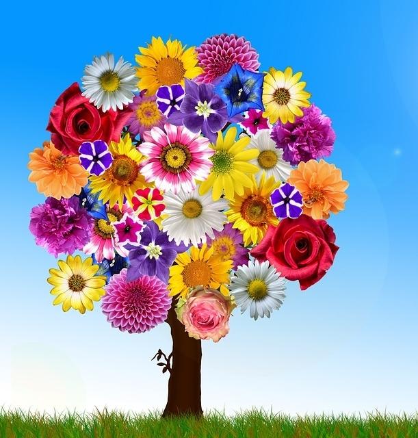 ein gezeichneter Baum mit Krone voller Blüten