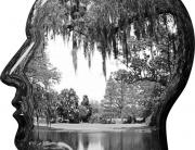 ein gezeichneter Kopf im Profil, innerhalb des Kopfes ist eine Landschaft mit Bäumen und einem See gezeichnet, alles in Schwarz- Weiss