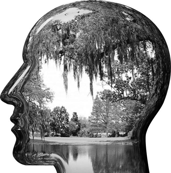 ein schwarz-weiss gezeichneter Kopf im Profil, in ihm eine Seenlandschaft