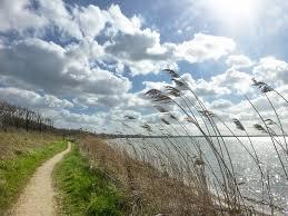 blauer Himmel mit Schäfchenwolken an einem See mit Fussweg