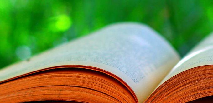 im Vordergrund ein aufgeschlagenes Buch, im Hintergrund Wiese
