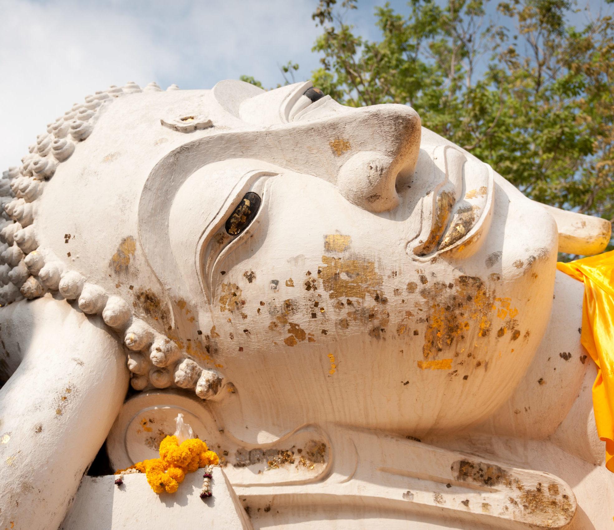 das Gesicht einer liegenden lächelnden Buddha-Statue, im Hintergrund eine Baumkrone