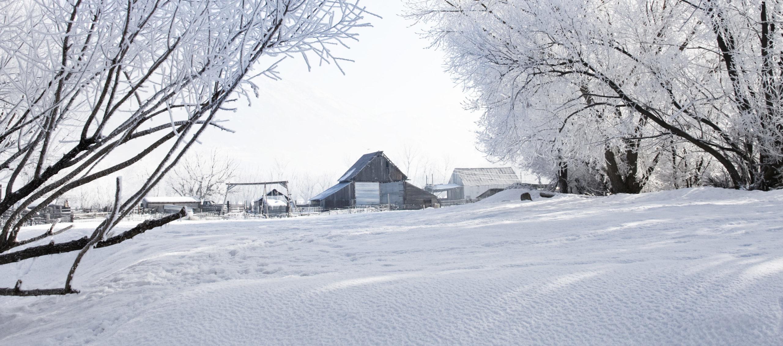 Frostig weisse Winterlandschaft, mit einem alten Schupfen in der Mitte vom Bild