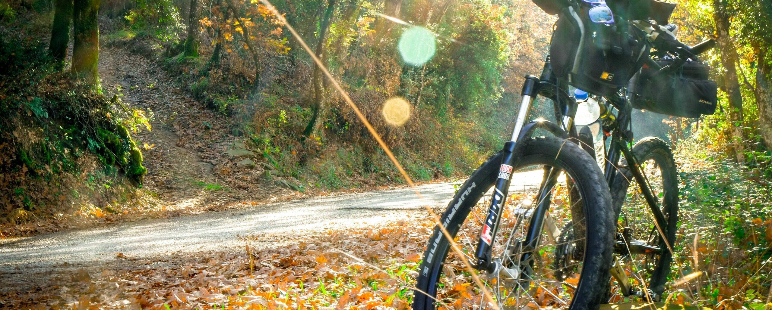 ein Fahrrad steht am Wegesrand, Herbststimmung